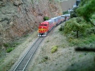 GP60Ms on the hill