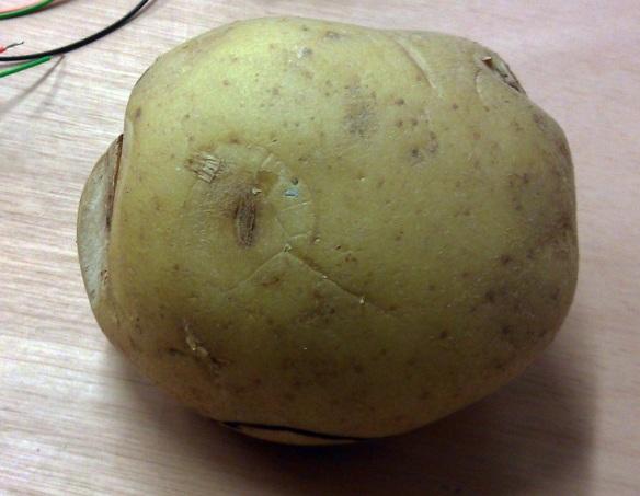 Potato Tool 1