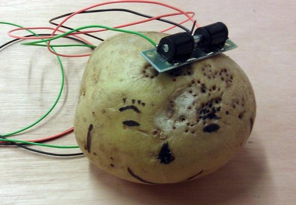 Potato Tool 3