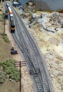 The 2015 NMRA (BR) Convention SS 6